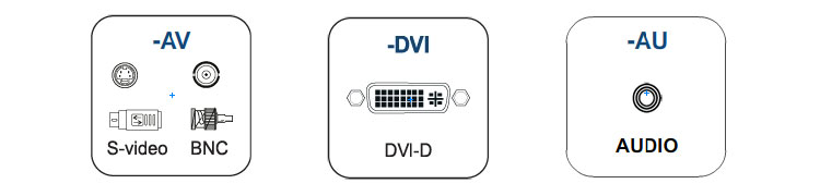 BNC, S-Video, DVI-D and Built-in Speaker options